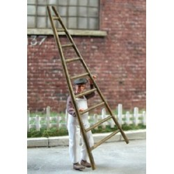 Painter carrying a ladder